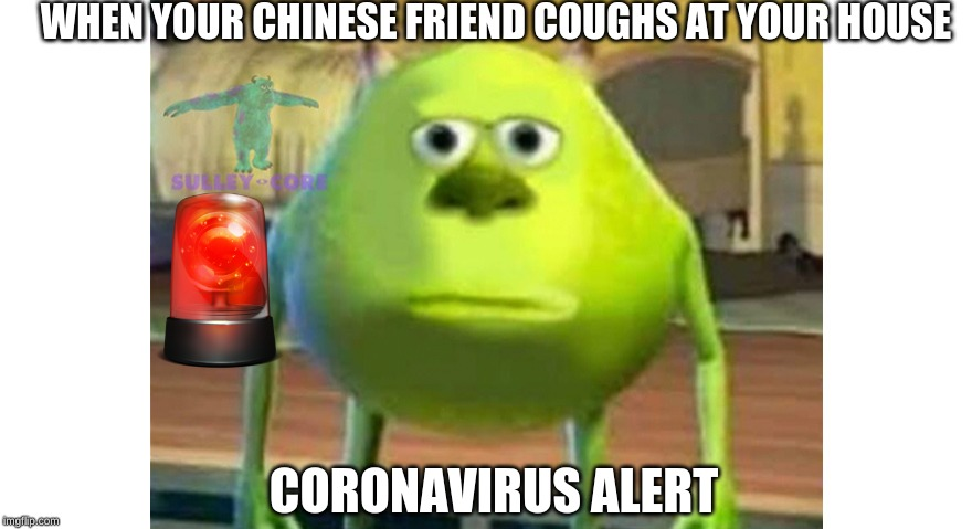 Mikesy | WHEN YOUR CHINESE FRIEND COUGHS AT YOUR HOUSE CORONAVIRUS ALERT | image tagged in mikesy | made w/ Imgflip meme maker