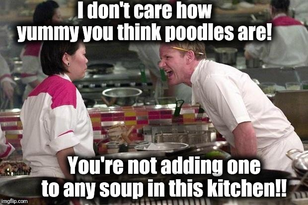 Gordon Ramsey |  I don't care how yummy you think poodles are! You're not adding one to any soup in this kitchen!! | image tagged in gordon ramsey | made w/ Imgflip meme maker
