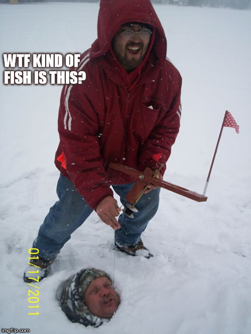 WTF KIND OF FISH IS THIS? | image tagged in fishing | made w/ Imgflip meme maker