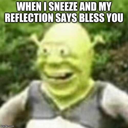 wlnqlfnaef |  WHEN I SNEEZE AND MY REFLECTION SAYS BLESS YOU | image tagged in wlnqlfnaef | made w/ Imgflip meme maker