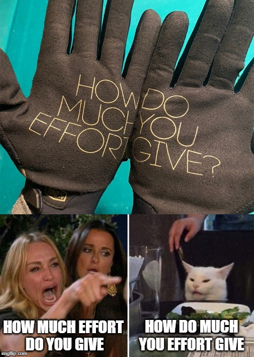 HOW DO MUCH YOU EFFORT GIVE; HOW MUCH EFFORT  DO YOU GIVE | image tagged in woman yelling at cat,cats,cat,grammar nazi,grammar nazi cat,bad grammar and spelling memes | made w/ Imgflip meme maker