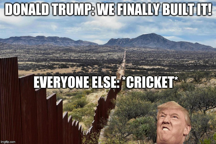 Dolan Troomp |  DONALD TRUMP: WE FINALLY BUILT IT! EVERYONE ELSE: *CRICKET* | image tagged in donald trump,great wall of trump | made w/ Imgflip meme maker