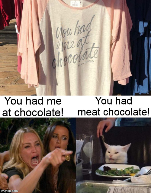 You had me at chocolate! You had meat chocolate! | image tagged in memes,woman yelling at cat,chocolate,meat | made w/ Imgflip meme maker