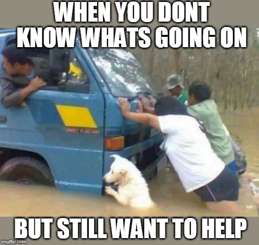 GOOD DOG! | WHEN YOU DONT KNOW WHATS GOING ON BUT STILL WANT TO HELP | image tagged in memes,help,dog,funny | made w/ Imgflip meme maker