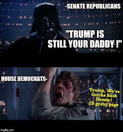 Democrats, Trump is Still Your Daddy ! | image tagged in senate republicans,star wars,impeachment,darth vader,luke skywalker,trial | made w/ Imgflip meme maker