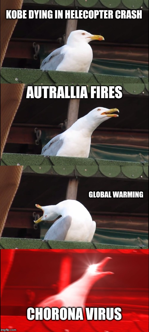 Inhaling Seagull Meme |  KOBE DYING IN HELECOPTER CRASH; AUTRALLIA FIRES; GLOBAL WARMING; CHORONA VIRUS | image tagged in memes,inhaling seagull | made w/ Imgflip meme maker