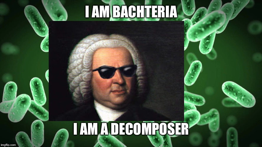 I AM BACHTERIA I AM A DECOMPOSER | image tagged in bach | made w/ Imgflip meme maker