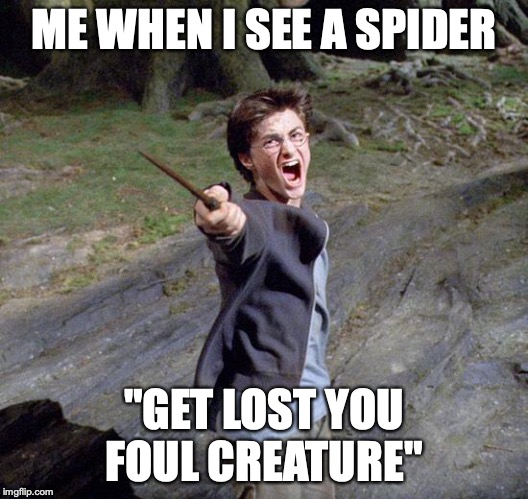 "Harry potter |  ME WHEN I SEE A SPIDER; ""GET LOST YOU FOUL CREATURE"" 