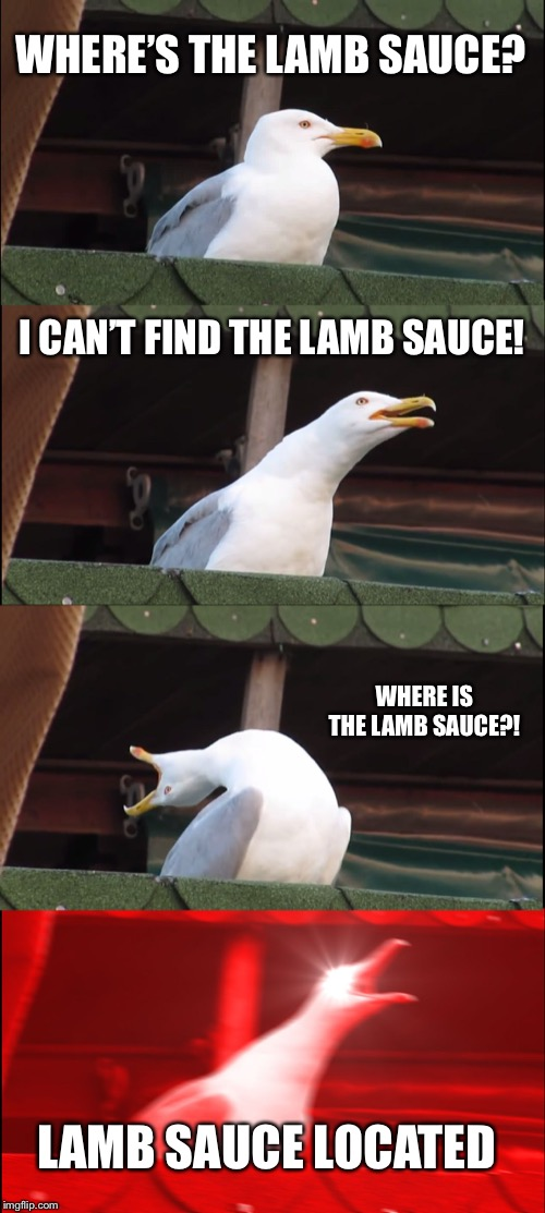 Inhaling Seagull Meme | WHERE'S THE LAMB SAUCE? I CAN'T FIND THE LAMB SAUCE! WHERE IS THE LAMB SAUCE?! LAMB SAUCE LOCATED | image tagged in memes,inhaling seagull | made w/ Imgflip meme maker