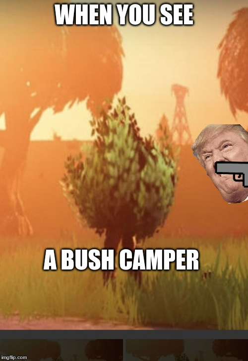 Fortnite bush |  WHEN YOU SEE; A BUSH CAMPER | image tagged in fortnite bush | made w/ Imgflip meme maker