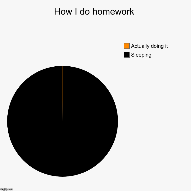 How I do homework | Sleeping, Actually doing it | image tagged in charts,pie charts | made w/ Imgflip chart maker