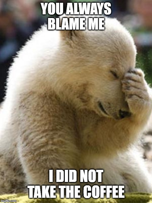 Facepalm Bear |  YOU ALWAYS BLAME ME; I DID NOT TAKE THE COFFEE | image tagged in memes,facepalm bear | made w/ Imgflip meme maker