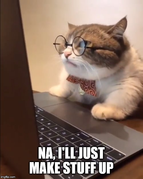 research cat | NA, I'LL JUST MAKE STUFF UP | image tagged in research cat | made w/ Imgflip meme maker