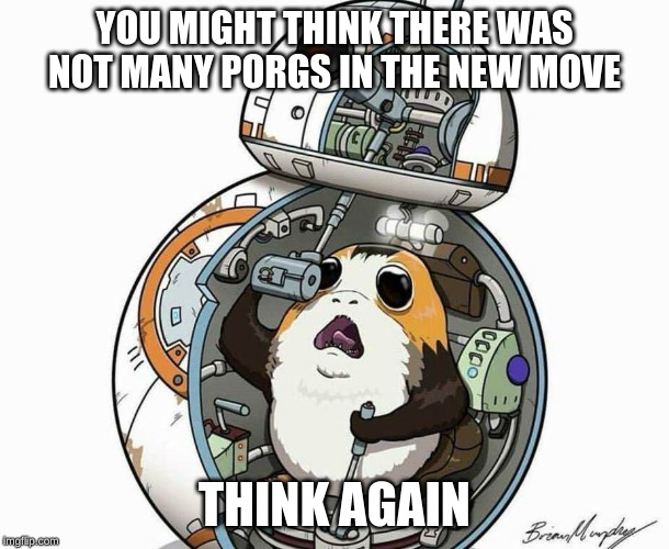 porg |  YOU MIGHT THINK THERE WAS NOT MANY PORGS IN THE NEW MOVE; THINK AGAIN | image tagged in porg | made w/ Imgflip meme maker