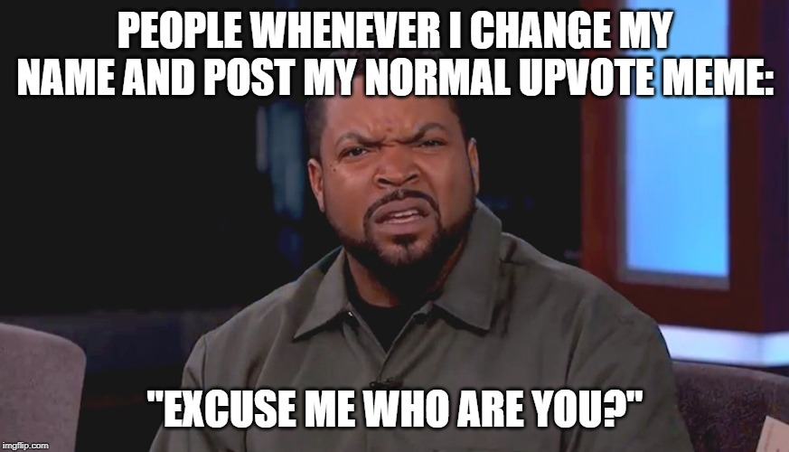 "Really? Ice Cube | PEOPLE WHENEVER I CHANGE MY NAME AND POST MY NORMAL UPVOTE MEME: ""EXCUSE ME WHO ARE YOU?"" 