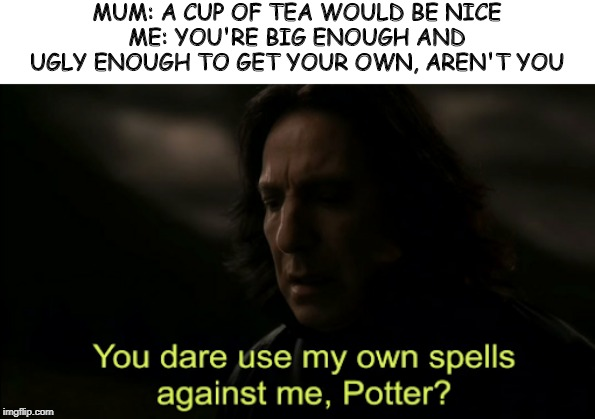 Use at your own risk. | MUM: A CUP OF TEA WOULD BE NICE ME: YOU'RE BIG ENOUGH AND UGLY ENOUGH TO GET YOUR OWN, AREN'T YOU | image tagged in you dare use my own spells against me,harry potter | made w/ Imgflip meme maker