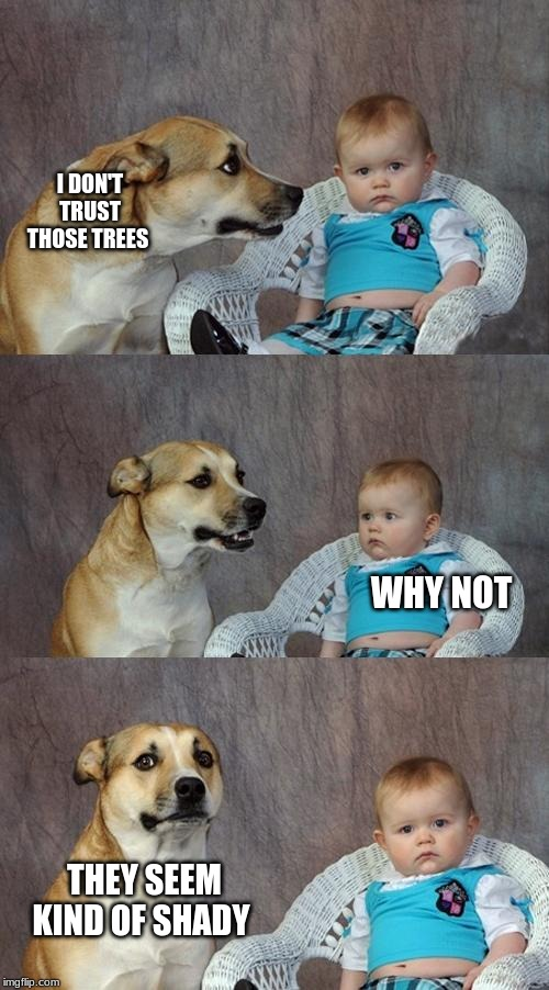 my brain in school? | I DON'T TRUST THOSE TREES WHY NOT THEY SEEM KIND OF SHADY | image tagged in memes,dad joke dog,funny memes | made w/ Imgflip meme maker