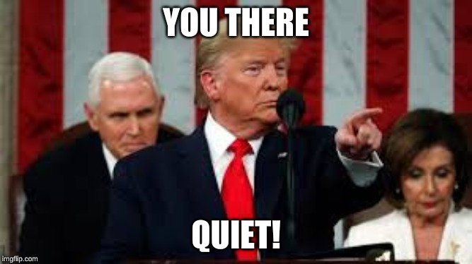 YOU THERE; QUIET! | image tagged in trump,donald trump,hilarious,politics,meme,trump meme | made w/ Imgflip meme maker