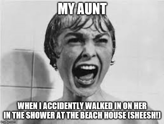 Pyscho |  MY AUNT; WHEN I ACCIDENTLY WALKED IN ON HER IN THE SHOWER AT THE BEACH HOUSE (SHEESH!) | image tagged in pyscho | made w/ Imgflip meme maker