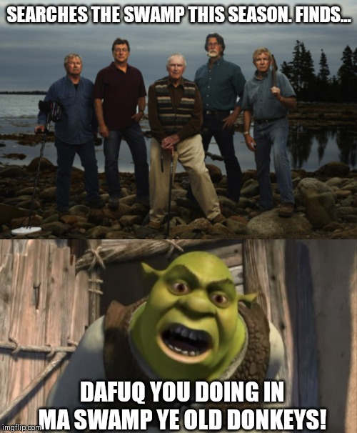 SEARCHES THE SWAMP THIS SEASON. FINDS... DAFUQ YOU DOING IN MA SWAMP YE OLD DONKEYS! | image tagged in shrek what are you doing in my swamp,oak island | made w/ Imgflip meme maker
