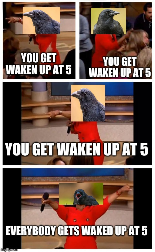Oprah You Get A Car Everybody Gets A Car |  YOU GET WAKEN UP AT 5; YOU GET WAKEN UP AT 5; YOU GET WAKEN UP AT 5; EVERYBODY GETS WAKED UP AT 5 | image tagged in memes,oprah you get a car everybody gets a car | made w/ Imgflip meme maker