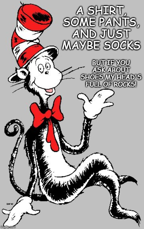 Getting my kids ready for school | A SHIRT, SOME PANTS, AND JUST MAYBE SOCKS BUT IF YOU ASK ABOUT SHOES MY HEAD'S FULL OF ROCKS! | image tagged in dr seuss,kids,school,wake up,sock,shoes | made w/ Imgflip meme maker