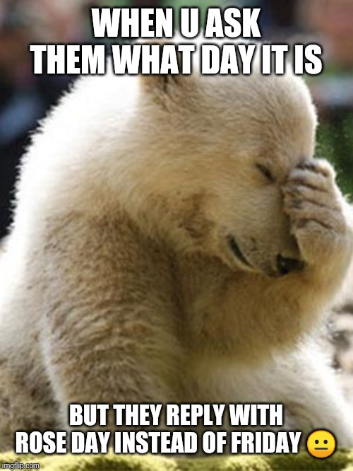 Facepalm Bear Meme | WHEN U ASK THEM WHAT DAY IT IS BUT THEY REPLY WITH ROSE DAY INSTEAD OF FRIDAY ? | image tagged in memes,facepalm bear | made w/ Imgflip meme maker