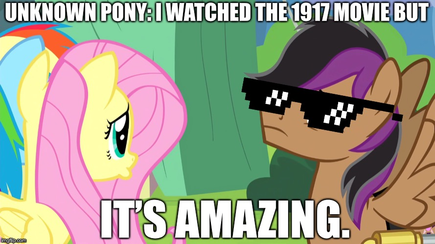 1917 movie is good |  UNKNOWN PONY: I WATCHED THE 1917 MOVIE BUT; IT'S AMAZING. | image tagged in mlp meme,memes,fluttershy,rainbow dash,1917,movie | made w/ Imgflip meme maker