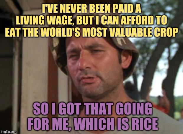 I have a whole bag of it in my pantry right now, ladies |  I'VE NEVER BEEN PAID A LIVING WAGE, BUT I CAN AFFORD TO EAT THE WORLD'S MOST VALUABLE CROP; SO I GOT THAT GOING FOR ME, WHICH IS RICE | image tagged in memes,so i got that goin for me which is nice,food,work sucks | made w/ Imgflip meme maker