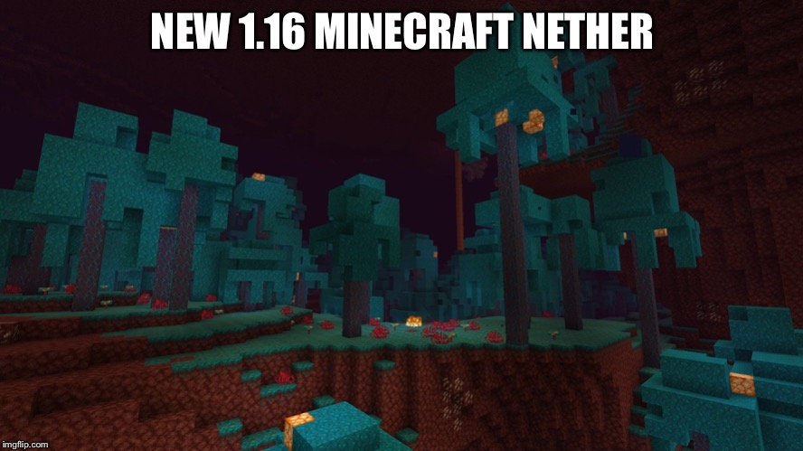 NEW 1.16 MINECRAFT NETHER | image tagged in minecraft | made w/ Imgflip meme maker