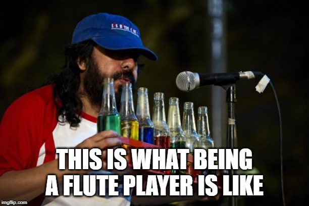 THIS IS WHAT BEING A FLUTE PLAYER IS LIKE | image tagged in memes music musical instruments | made w/ Imgflip meme maker