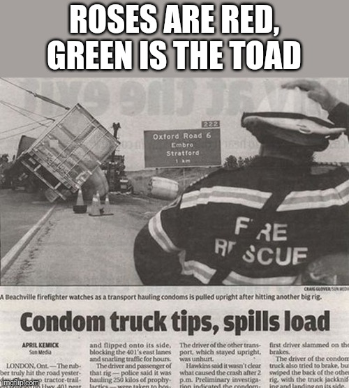 ROSES ARE RED, GREEN IS THE TOAD | image tagged in funny memes | made w/ Imgflip meme maker