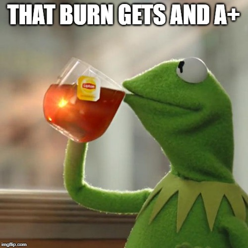 But Thats None Of My Business Meme | THAT BURN GETS AND A+ | image tagged in memes,but thats none of my business,kermit the frog | made w/ Imgflip meme maker