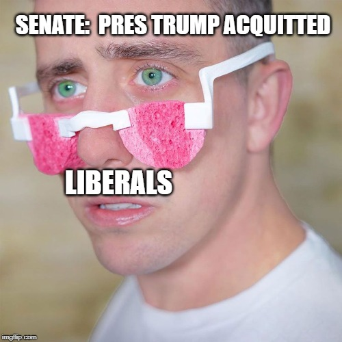 Liberal Tears | SENATE:  PRES TRUMP ACQUITTED LIBERALS | image tagged in liberal tears,trump,pelosi,acquitted,crying liberals | made w/ Imgflip meme maker