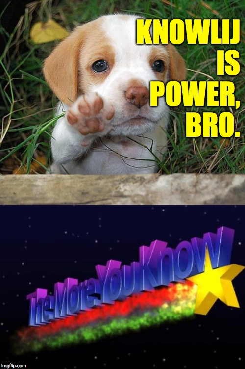 KNOWLIJ IS POWER, BRO. | image tagged in the more you know,dog puppy bye | made w/ Imgflip meme maker