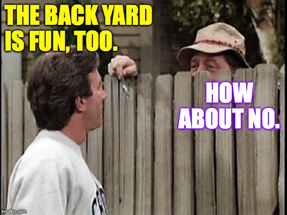 Home Improvement Tim and Wilson | THE BACK YARD IS FUN, TOO. HOW ABOUT NO. | image tagged in home improvement tim and wilson | made w/ Imgflip meme maker