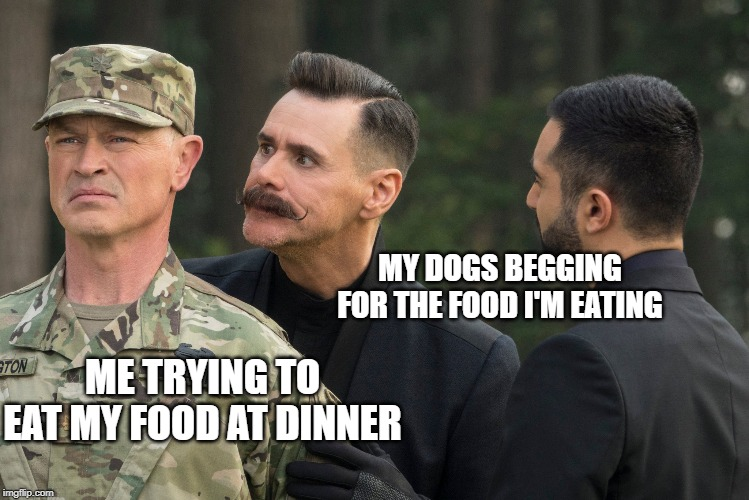 MY DOGS BEGGING FOR THE FOOD I'M EATING; ME TRYING TO EAT MY FOOD AT DINNER | image tagged in relatable,sonic movie,jim carrey | made w/ Imgflip meme maker