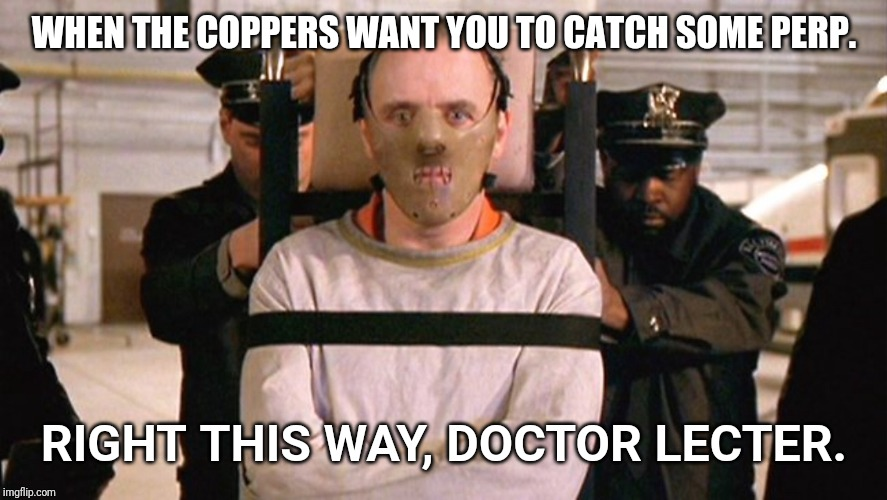 Hannibal  |  WHEN THE COPPERS WANT YOU TO CATCH SOME PERP. RIGHT THIS WAY, DOCTOR LECTER. | image tagged in hannibal | made w/ Imgflip meme maker