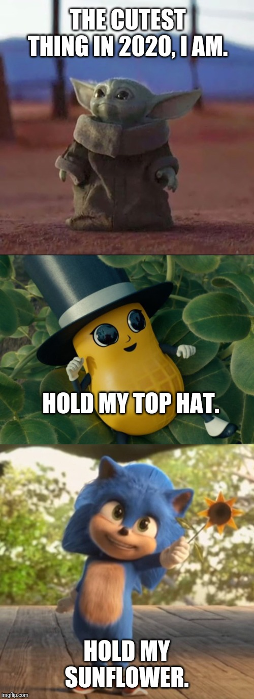It's like 2020 came with a cuteness parade! | THE CUTEST THING IN 2020, I AM. HOLD MY SUNFLOWER. HOLD MY TOP HAT. | image tagged in baby yoda,baby sonic,baby nut,memes,funny,cute | made w/ Imgflip meme maker