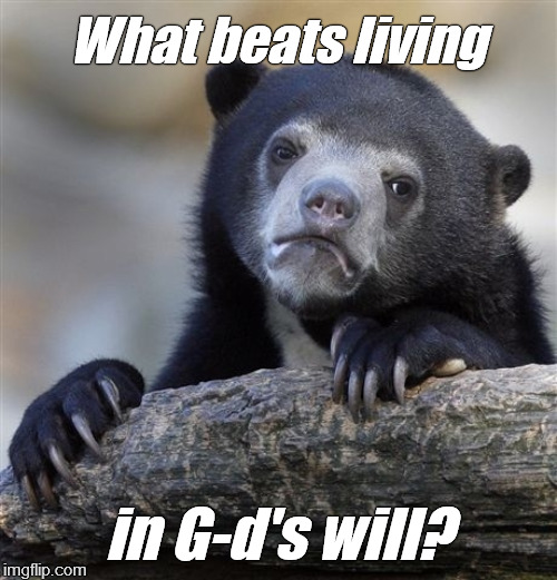 Well, nothing. | What beats living in G-d's will? | image tagged in confession bear,theology,i'm a simple man,so is,douglie | made w/ Imgflip meme maker