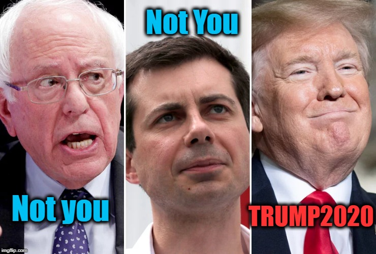 The Choice is Obvious |  TRUMP2020; Not You; Not you | image tagged in politics,political meme,politics lol,politicians,american politics,president trump | made w/ Imgflip meme maker