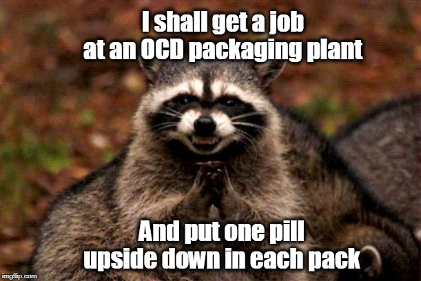 Evil Plotting Raccoon Plots Evilly |  I shall get a job at an OCD packaging plant; And put one pill upside down in each pack | image tagged in evil plotting raccoon,ocd,distraction,raccoon | made w/ Imgflip meme maker