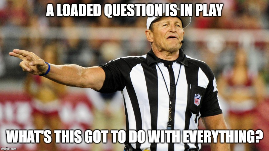 Logical Fallacy Referee |  A LOADED QUESTION IS IN PLAY; WHAT'S THIS GOT TO DO WITH EVERYTHING? | image tagged in logical fallacy referee | made w/ Imgflip meme maker