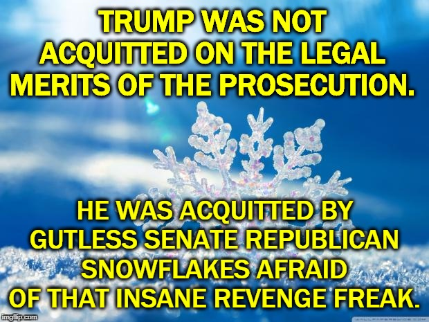 Trump was not exonerated. He's still guilty even if GOP snowflakes have no balls. |  TRUMP WAS NOT ACQUITTED ON THE LEGAL MERITS OF THE PROSECUTION. HE WAS ACQUITTED BY GUTLESS SENATE REPUBLICAN SNOWFLAKES AFRAID OF THAT INSANE REVENGE FREAK. | image tagged in snowflake,trump,gop,senate,republican,impeachment | made w/ Imgflip meme maker