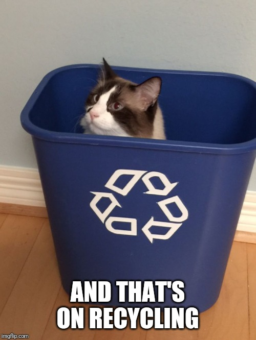 cat recycle | AND THAT'S ON RECYCLING | image tagged in cat recycle | made w/ Imgflip meme maker