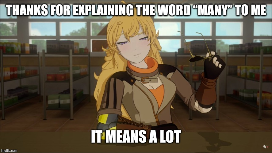"Yang's Puns | THANKS FOR EXPLAINING THE WORD ""MANY"" TO ME IT MEANS A LOT 