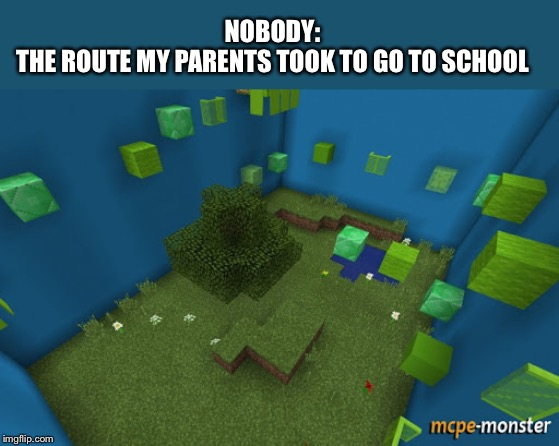 NOBODY: THE ROUTE MY PARENTS TOOK TO GO TO SCHOOL | image tagged in memes,funny memes,minecraft | made w/ Imgflip meme maker