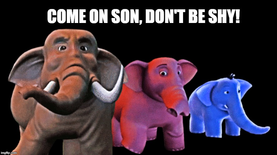 COME ON SON, DON'T BE SHY! | image tagged in elephant | made w/ Imgflip meme maker