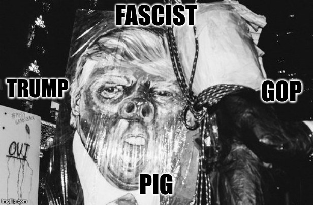 Trump is a Pig |  FASCIST; TRUMP; GOP; PIG | image tagged in trump,fascist,pig,gop,un-american | made w/ Imgflip meme maker
