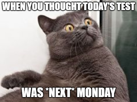 WHEN YOU THOUGHT TODAY'S TEST WAS *NEXT* MONDAY | image tagged in the moment when you realise exams are in a month | made w/ Imgflip meme maker